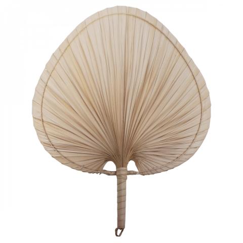 abanico de palmera